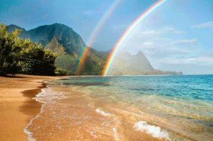 再见,夏威夷!