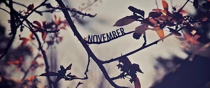 译诗 | 十一月初(November for Beginners)